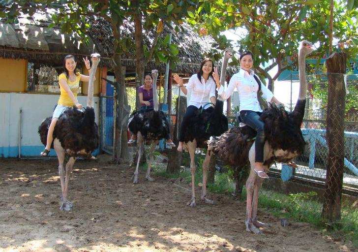 Du lịch Vĩnh Long - Một ngày làm nông dân